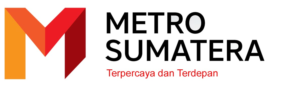 Logo MS copy