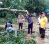 Walikota Bersihkan Pohon Tumbang