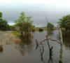 Atasi Banjir, Pengerukan Sungai Talang Karet Diusulkan