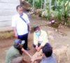 Waspada, 700 Hewan Pembawa Rabies Berkeliaran
