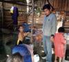 Miris!!! Ibu dan 4 Anak Tinggal Digubuk Berlantai Tanah, Butuh Uluran Tangan Pemerintah