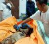 Indra Akhiri Hidup Dengan Tiduran Diatas Kereta Api