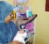 Heboh!!! Warga Pinang Belarik Temukan Bayi di Samping Rumah