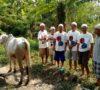 Weli: Sumbang Hewan Kurban Bukan Ajang Pamer