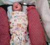 Bayi Perempuan Dibuang Disemak-semak