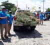 BNN dan Brimob Temukan 1 Hektar Lahan Ganja