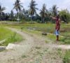Jalan Desa Padang Lebar Akan Dilakukan Pengerasan