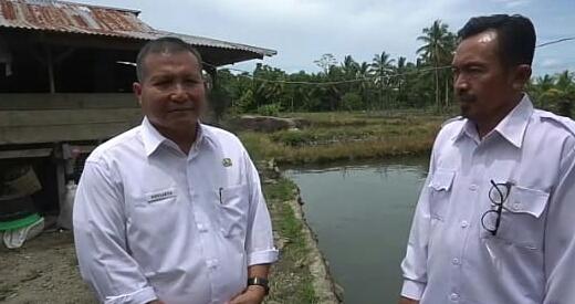 Pemkab Salurkan Bantuan Rp450 Juta Untuk Petani Ikan Patin