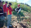 DPRD Apresiasi Program Tanam Jagung di Bengkulu Selatan