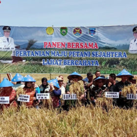 Bupati Berikan Bantuan Alat Pertanian di Panen Raya