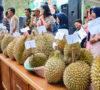 Ken-Durian Lebong Sukses Kenalkan Objek Wisata