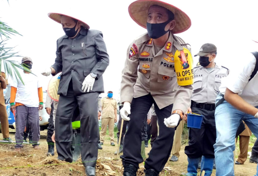 Kapolres dan Dinas Pertanian Asahan Lakukan Tanam Jagung