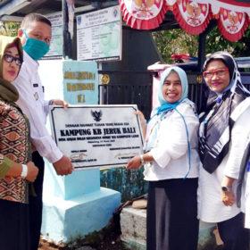 Disdalduk KB Serahkan Prasasti dan Piagam Penghargaan Bidan Desa