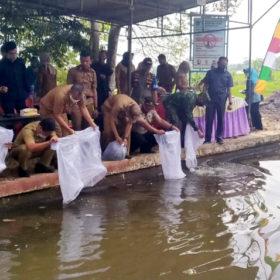 2 RIbu Benih Ikan Ditaburkan di Tebat Dayang Rindu