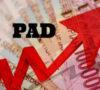 Penurunan Anggaran, Kedepan Harus Adanya Peningkatan PAD