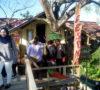 Berawal Rasa Iseng Sang Pemilik, Pohon Wisata Rumah Diramaikan Pengunjung