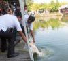 Peringati Hari Nelayan Nasional Gelar Mancing