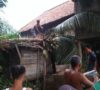 Akibat Angin Kencang, Pohon Kelapa Tumbang Timpa Rumah dan Lumbung Padi