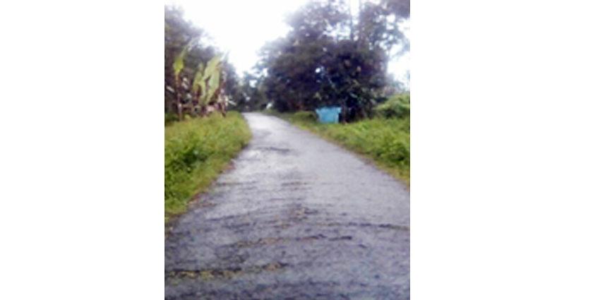 Jalan Menuju Pesantren Koto Baru Sungai Tarab Butuh Perbaikan