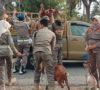 Tangkap 25 Ternak dan 4 Pemuda Pesta Tuak