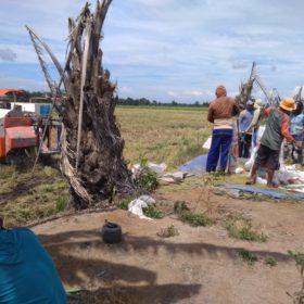 Petani Milenial Airsugihan Menuju Teknologi Pertanian Modern